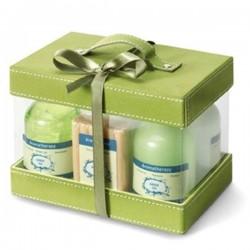 Darčeková kazeta s vôňou zeleného čaju 6 kusov